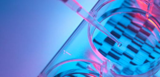 Biologe verwendet Genom-Datenbank zu untersuchen Krebszellen