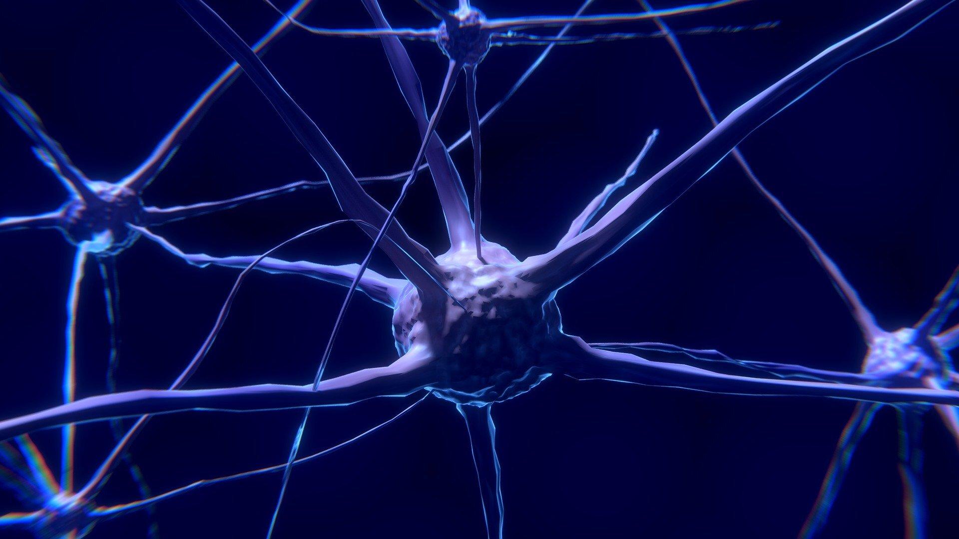 Gehirn-Lärm enthält eine einzigartige Signatur des Traum-Schlaf