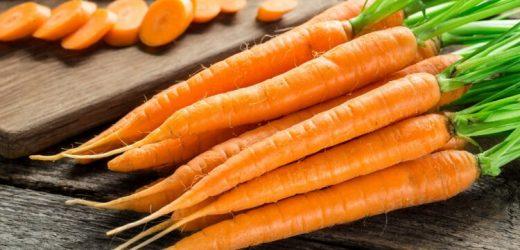 Ernährung: Karotten und Co stärken das Gehirn – Naturheilkunde & Naturheilverfahren Fachportal