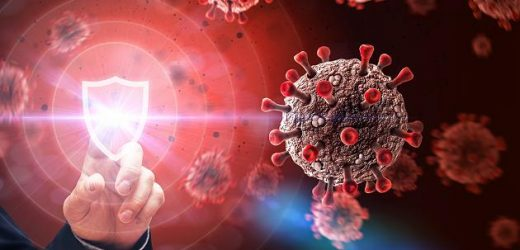Frankfurter Forscher finden Protein, das schweren Corona-Verlauf vorhersagt