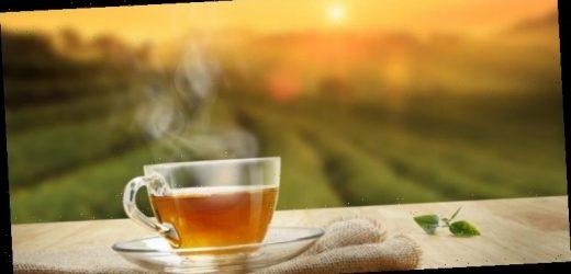 Rückruf: Salmonellen in Tee festgestellt – Naturheilkunde & Naturheilverfahren Fachportal