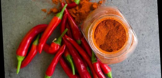 Chili sorgt für ein längeres Leben