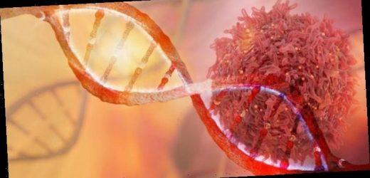 Krebs: Mutiertes Gen erhöht Krebsrisiko – rund jede dritte Person hat diese Mutation – Heilpraxis