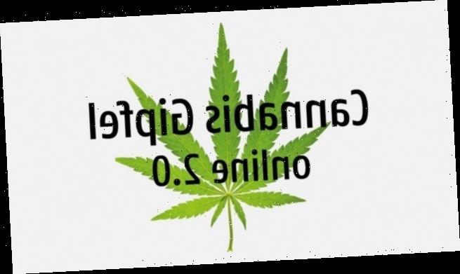 Cannabis Gipfel online 2.0: jetzt anmelden und punkten!