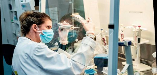 Dänemark rechnet wegen Virus-Variante mit steigenden Corona-Zahlen