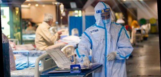 Indische Gesundheitsbehörden wollen Pilzinfektion zur Epidemie erklären